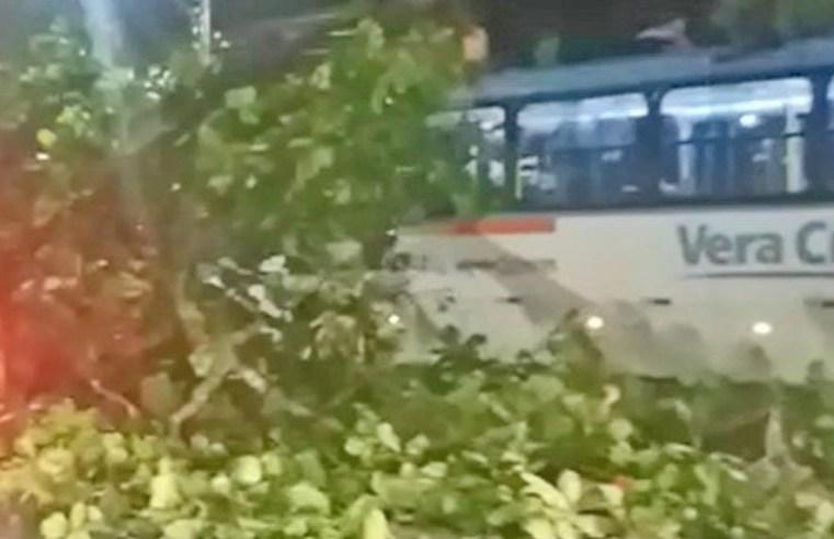 Recife: Acidente com ônibus da Vera Cruz na Avenida Mascarenhas de Moraes chama atenção