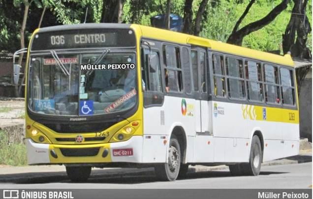 Maceió: Câmara aprova lei que autoriza acumulação de função entre motorista e cobrador