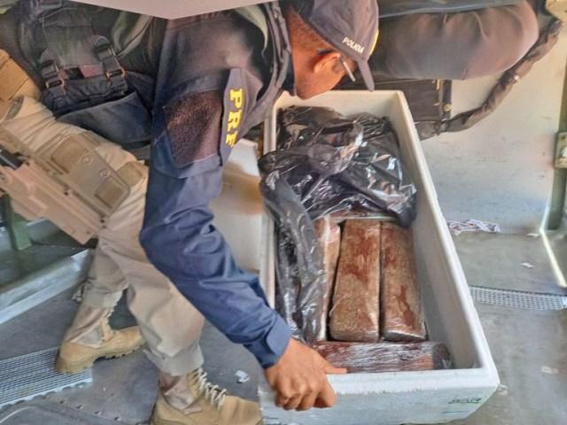 PRF apreende 26kg de entorpecente em bagageiro de ônibus na BR-135 em São Luís - revistadoonibus
