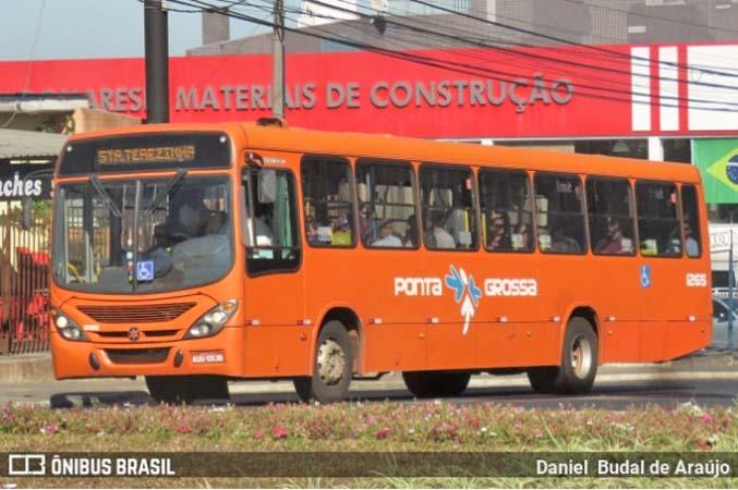 Ponta Grossa: Motorista de ônibus é agredido com foice durante assalto a ônibus