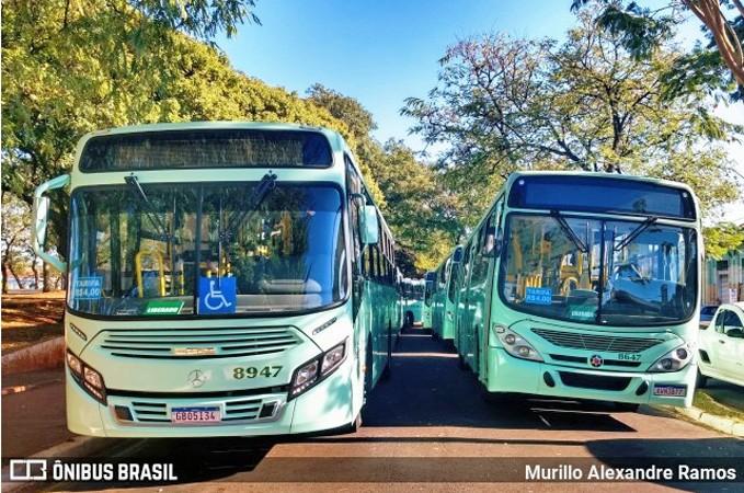 SP: Prefeitura de Jaú multa empresas de ônibus por excesso de passageiros