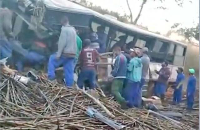 Vídeo: Acidente dentre caminhão e ônibus deixa 37 feridos na GO-222 em Adelândia - revistadoonibus