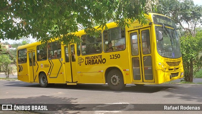 SP: Rodoviários de Presidente Prudente seguem com paralisação nesta quinta-feira