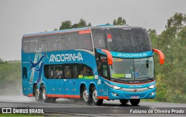 Viação Andorinha abre vaga para teste de motorista em Campo Grande no dia 8 - revistadoonibus