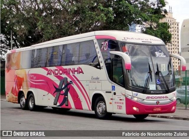 SP: Polícia Militar Rodoviária apreende passageira de ônibus com entorpecentes na Rodovia Raposo Tavares - revistadoonibus