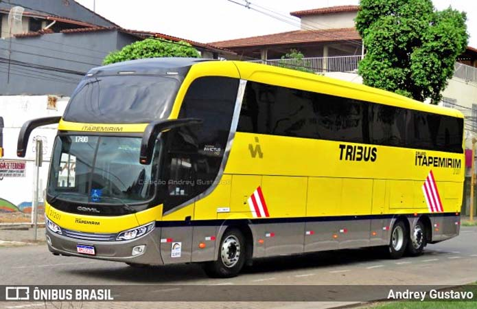 Viação Itapemirim aposta no conforto do ônibus Low Drive e chama a atenção de clientes