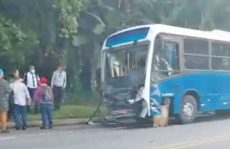 RJ: Acidente entre carros e ônibus deixa um morto na Rio x Santos em Paraty