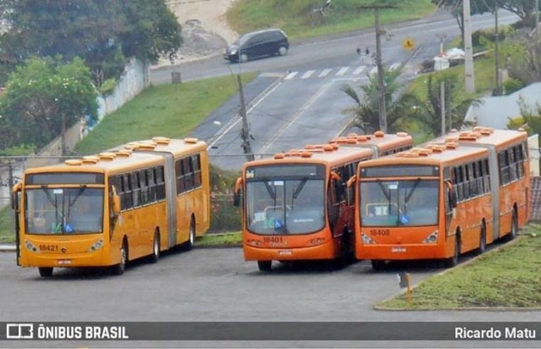 PR: Cidade de Colombo recebe reforço em 6 linhas de ônibus a partir de segunda-feira