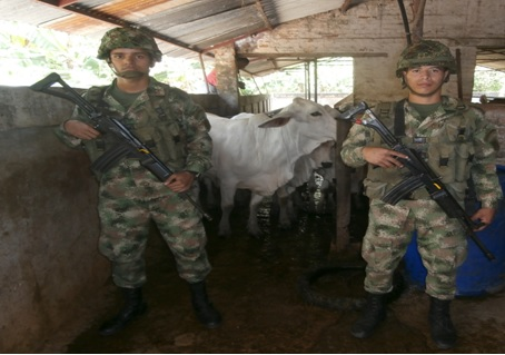 ejercito 15