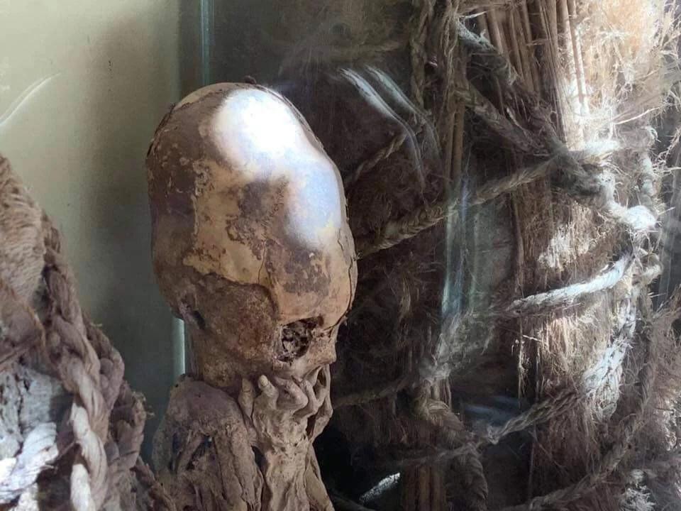 Crânios alongados absolutamente anômalos foram descobertos no Peru 2