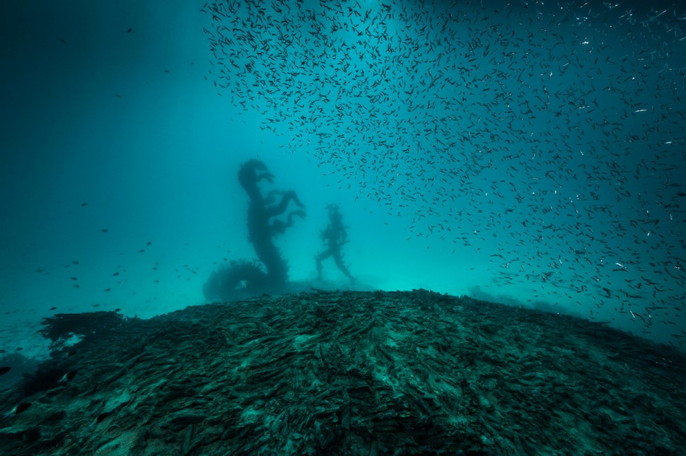 Damien Hirst Treasures from the wreck of The Unbelievable 2007 Foto Christoph Gerigk