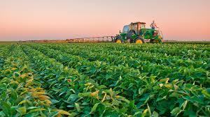 En 2019 aumentarían en 6.400 millones de dólares las ventas al exterior del complejo agroexportador