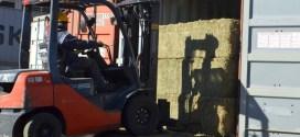 Córdoba: seis productores crearon una empresa y en tres años concretaron la primera exportación de alfalfa compactada