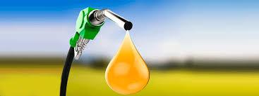 Se certificó que el biodiésel que se exporta desde Argentina a la Unión Europea es sustentable.