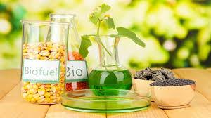 La UE postergó para enero la aplicación de nuevos aranceles al biodiésel local.