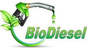 El gobierno busca reabrir la exportación de biodiésel hacia EE.UU.