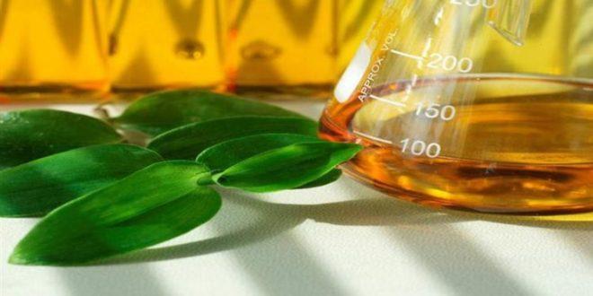 Productores de bioetanol dicen que nuevos precios permiten poner en marcha todas las plantas paradas.