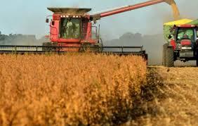 La agroindustria no ve grandes cambios en los nuevos plazos para liquidar divisas.
