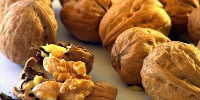 De la Patagonia a Italia: Neuquén exportó nueces por primera vez.