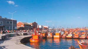 Menos del 10% de las empresas exporta desde Puerto Mar del Plata