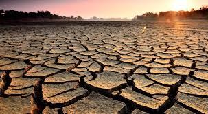 La sequía y otros riesgos climáticos ponen en alerta el comercio y la producción mundial de alimentos