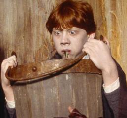 Ron Weasley a vomitar lesmas para dentro de um balde, após uma maldição ricochetada.