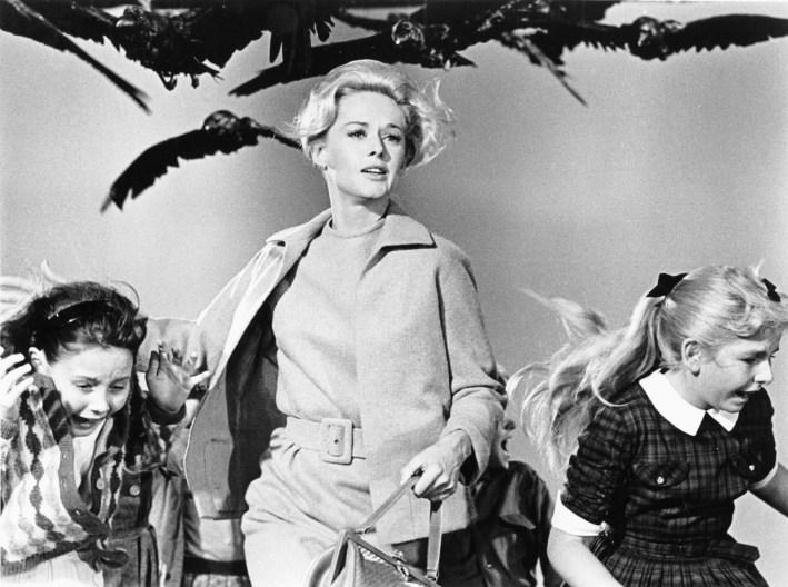 Tippi Hedren convoca a violência apocalíptica dos pássaros ao recusar sua submissão e engendrar novos possíveis escapes para a mulher.