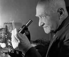 A URSS. Moscou. 01 de dezembro de 1938 Professor do Departamento de Microbiologia do 2º Instituto Médico de Moscou em seu escritório Nikolai Fedorovitch Gamaleia. Crédito: Leonid Dorensky/TASS Photo Chronicle.