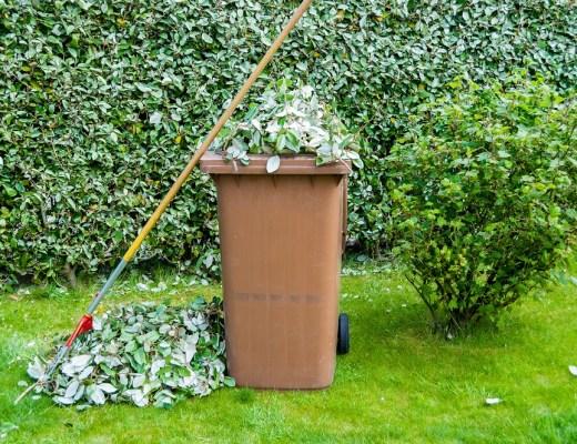 lixo verde