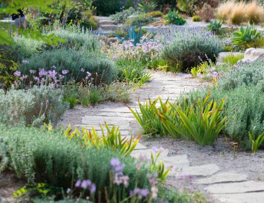 Jardim depois com flores