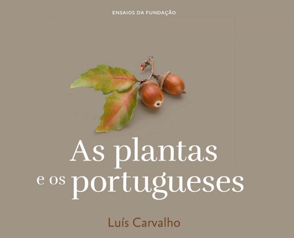 Luís Mendonça de Carvalho