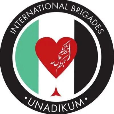 Un grupo heterogéneo de solidarios internacionales, entre ellos un compañero de Revista La comuna, detenidos por la entidad sionista