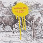 Boston Rex