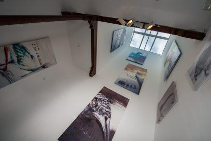 Presentación proyecto expositivo 'Ecuaciones [Esculturas olfativo-acústicas]' de Oswaldo Maciá. Sala S. Antonio Abad. Cortesía del CAAM