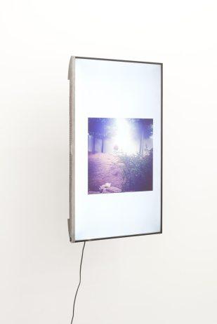 Cristina Garrido, The social life of Untilled (Liegender-Frauenakt), 2016, Digital video HD in vertical monitor, 2m04s. Cortesía de Rodríguez Gallery