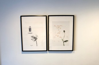 Vistas de exposicion The Forgotten History of the First Drug War de Teresa Serrano, mezzanine Galeria SENDA, marzo 2018. Imagen cortesía de Galería SENDA