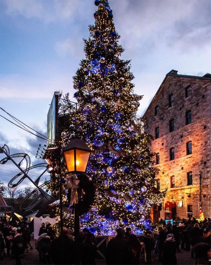 Los mercados navideños más bonitos del mundo, toronto