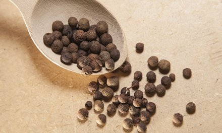El herbario: pimienta gorda