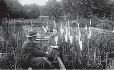 Karpechenko y una colega, Barulin, en el Instituto de Botánica Aplicada de Detskoe Selo