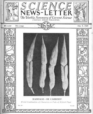 Rabacol en Science News letter