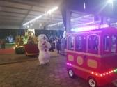 Parada de Natal Vera Longuini