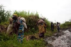 Starved For Attention © Franco Pagetti/VII, Democratic Republic of Congo.
