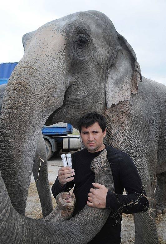 El cirquero Joey Gärtner con uno de sus elefantes.