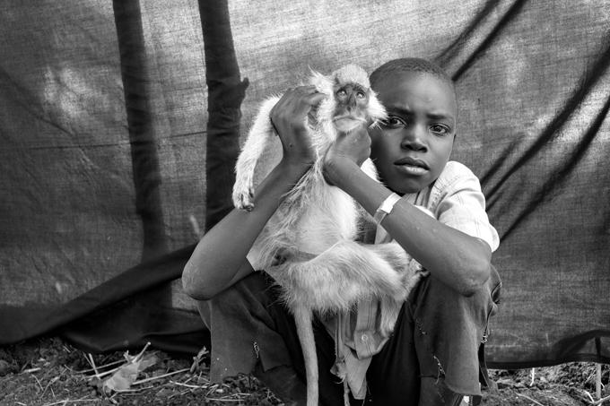El bombardeo aéreo obligó a Ahmed, de 10 años, y a su familia a huir de su casa en la aldea de Taga, en el estado de Nilo Azul de Sudán, siete meses antes de que se tomara esta fotografía. Lo más importante que pudo llevarse consigo es a Kako, su mono mascota. Kako y Ahmed hicieron el viaje de cinco días desde Taga hasta la frontera con Sudán del Sur juntos en la parte trasera de un camión. Ahmed dice que no puede imaginarse la vida sin Kako, y que lo más difícil de abandonar el Nilo Azul fue tener que dejar al asno de su familia. Campamento de refugiados de Jamam, Maban, Sudán del Sur. Foto © Brian Sokol.