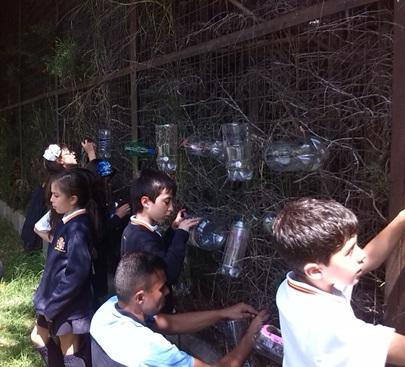 Elaboración de nuestro jardín vertical.