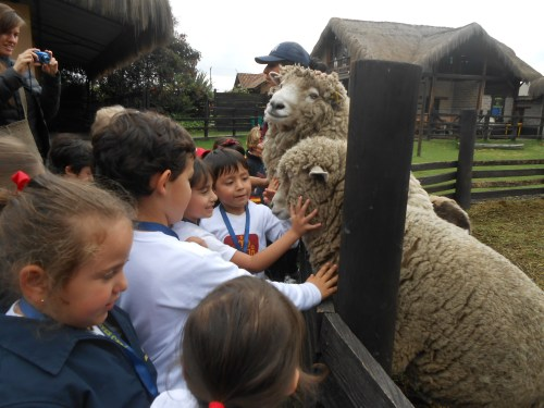 Los animales fueron muy simpáticos con Educación Infantil.