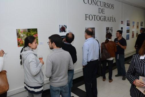 El público visitando la muestra.