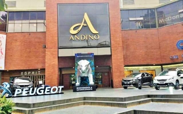 Peugeot en Andino_2.jpg