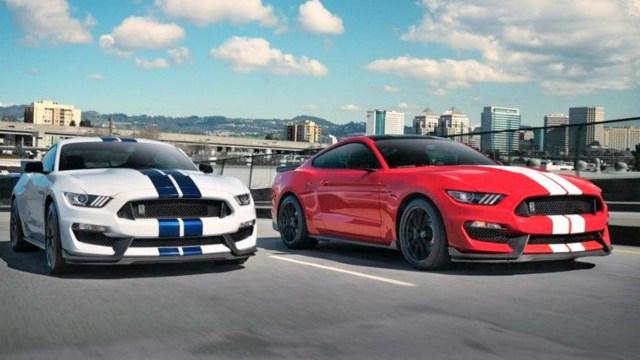 Mustang_Shelby blanco_azul solo capot