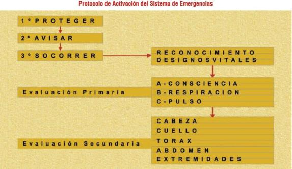 10 pasos elementales para una buena atención en caso de emergencias